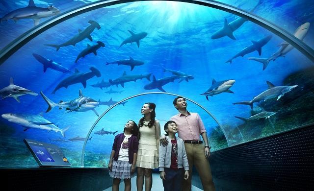 Marine Life Park™, Singapore