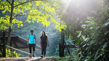 Ban ngày ngoài trời từ xa ảnh chụp trực diện của cặp đôi trẻ đi bộ đường dài trên đường mòn