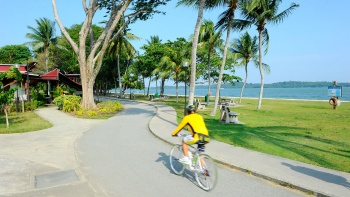 A person cycling at Changi Beach Park