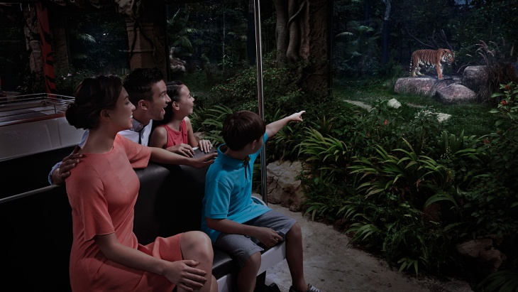 Family on a Night Safari tram ride