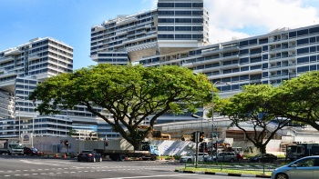 Exterior of The Interlace from ground level with lush trees