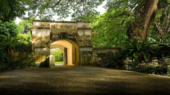 Fort Canning Park features ancient artefacts for history buffs to outdoor lawns for concerts, and of course, greenery for nature lovers.