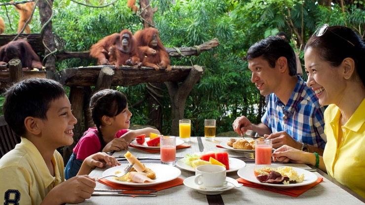 Family dining with orangutans in Singapore Zoo.
