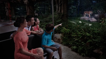 A family getting a view of the Malayan tiger from the tram at the Singapore Night Safari