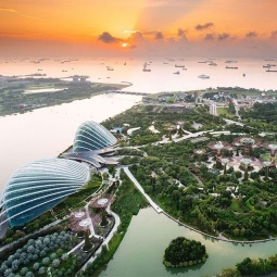 Aerial view of Gardens by the Bay.