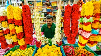 Flower Vendor at Little India Singapore