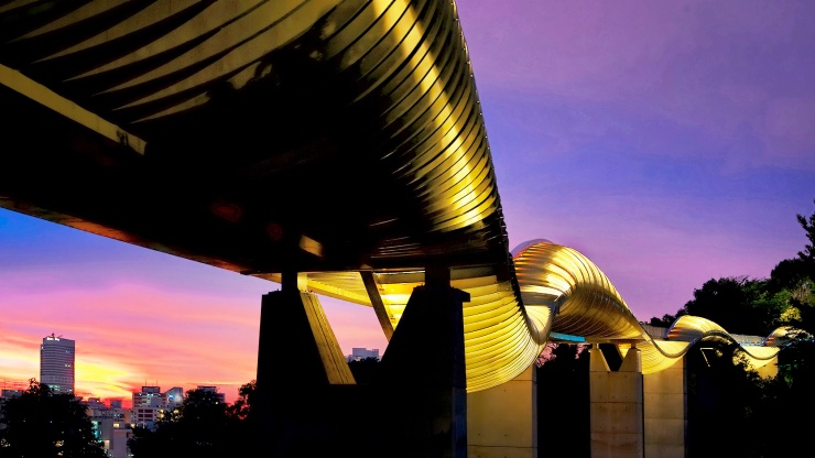 Colours of the sunset reflecting on Henderson Waves Bridge giving it a beautiful golden sparkle