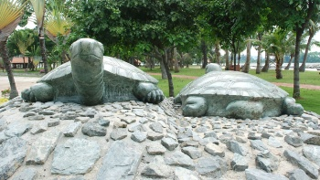 Close up shot of two tortoise stone statues