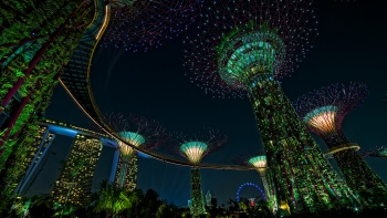 Witness a one-of-a-kind music and lights show with Garden Rhapsody at the Gardens by the Bay in Singapore.
