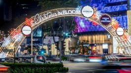This iconic street comes to life with dazzling lights, festive decorations and even towering Christmas trees to celebrate the holiday season.