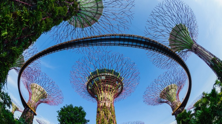 Bidikan lebar pemandangan OCBC Skyway 360 derajat di Gardens by the Bay