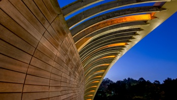 Henderson Waves is anchored by steel arches and filled in with curved slats of Balau wood