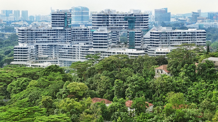 Beautiful aerial shot of The Interlace with lush greenery in the foreground