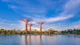 Be mesmerised by stunning waterfront views at the award-winning horticultural destination that is Gardens by the Bay.