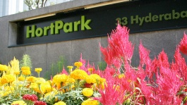 Escape the buzz of the city at HortPark, Singapore.