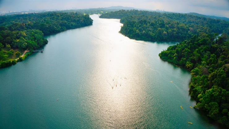 Aerial view of MacRitchie Reservoir