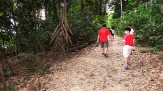 A family walking on the 11km walking trail at MacRitchie