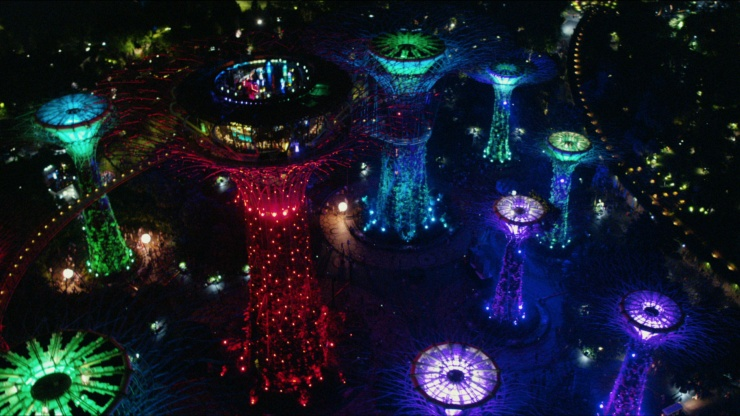 Aerial view of colourful Supertree Grove at Gardens By The Bay lighted up at night.