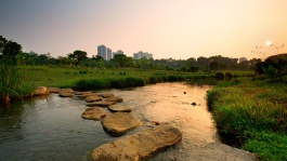 River at Bishan-Ang Mo Kio Park.