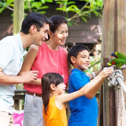 A family of four at the Jurong Bird Park